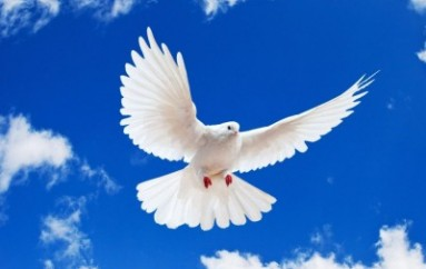 """""""Αγγελιοφόροι της ειρήνης σ΄ έναν κόσμο τρομαγμένο"""" του Μητροπολίτη Βελγίου"""