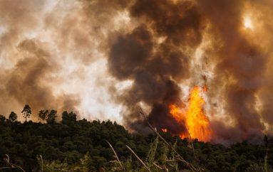 Μεγάλη πυρκαγιά κοντά σε Μοναστήρι στη Ζάκυνθο