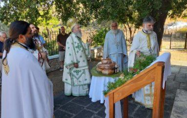 Η εορτή του Οσίου Θεοδοσίου του Νέου στην Ι. Μ. Χαλκίδος