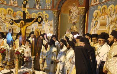 15 έτη στο Θρόνο του Αγίου Μάρκου ο Αλεξανδρινός Προκαθήμενος Θεόδωρος Β΄