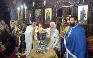 Θεοφάνεια στην Ιερά Μητρόπολη Παραμυθίας
