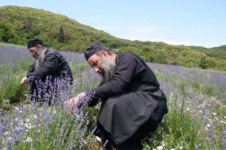 Δείτε το αποκαλυπτικό ντοκιμαντέρ για την καθημερινή ζωή μέσα στο Άγιον Όρος