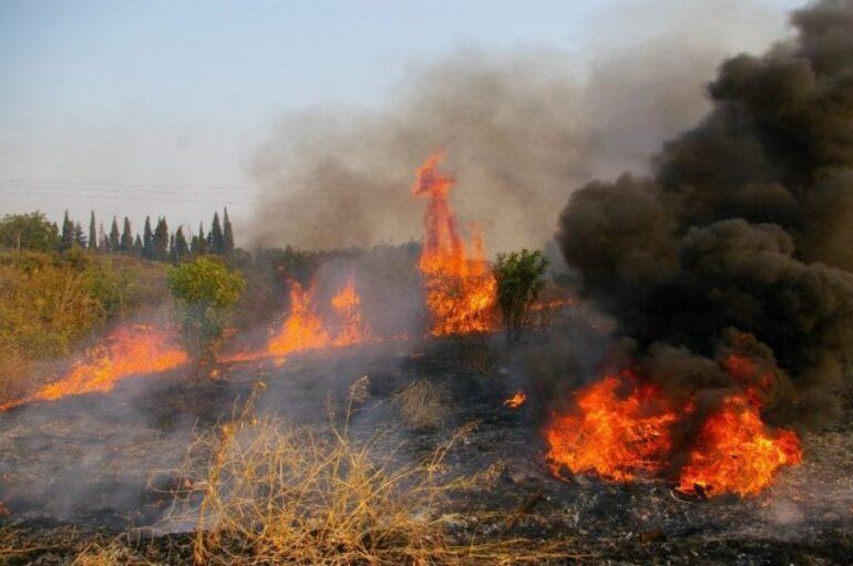 Φωτιά ξέσπασε στο Άγιον Όρος