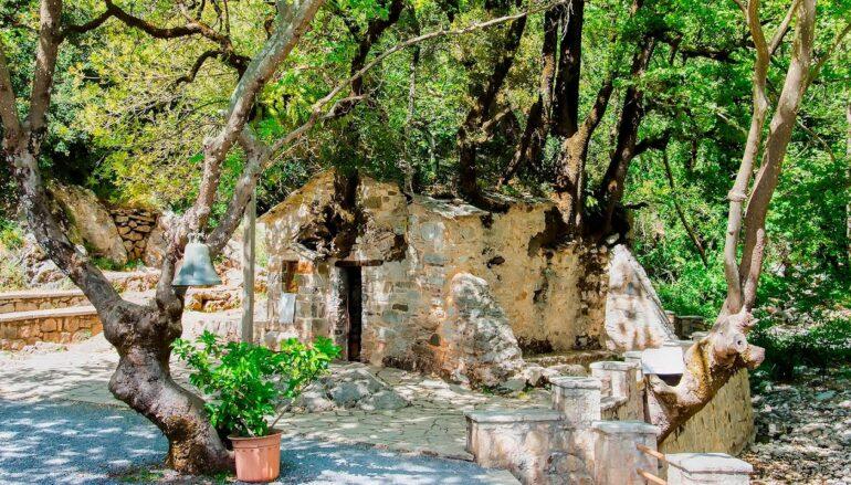 Η Αγία Θεοδώρα εν Βάστα και τα δέντρα στη στέγη του Ναού της