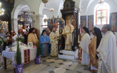 Τεσσαρακονθήμερο Μνημόσυνο του Αρχιμ. Ιωάννη Στάμου στην Άνδρο